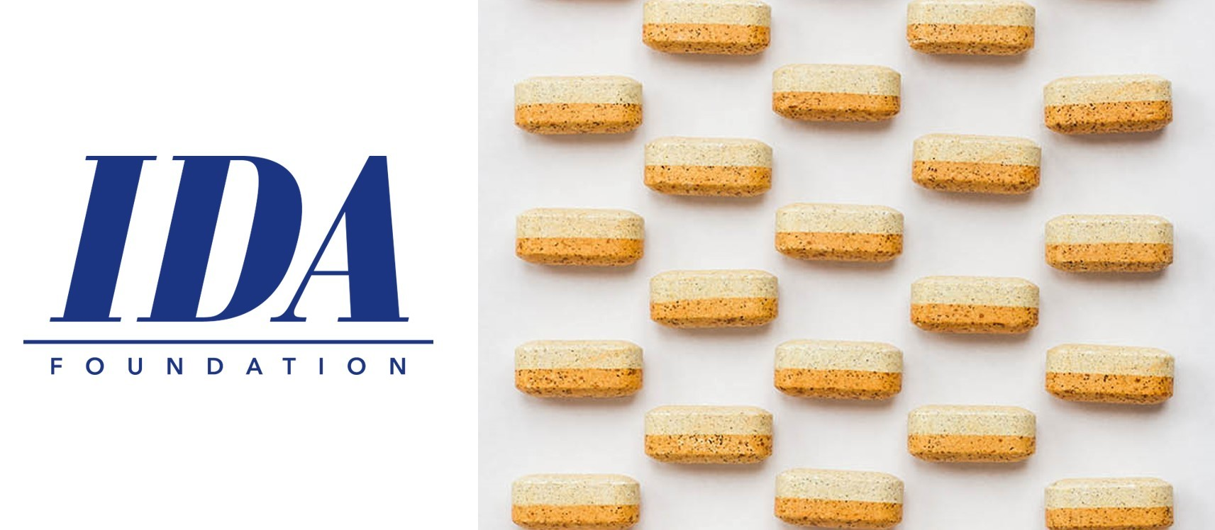IDA Foundation accepté dans un pacte global